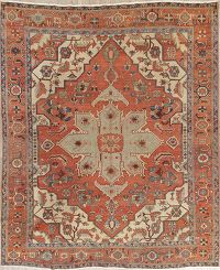 Pre-1900 Vegetable Dye Heriz Persian Wool Rug 10x12