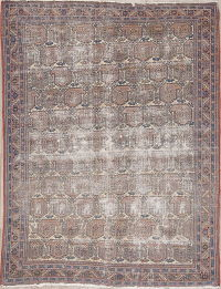 Pre-1900 Muted Distressed Afshar Persian WORN Area Rug 5x7