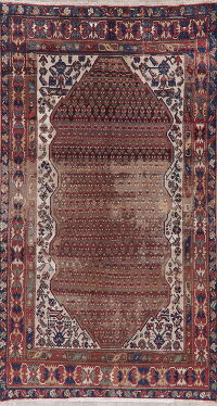 Pre-1900 Vegetable Dye Malayer Persian Wool Rug 5x9