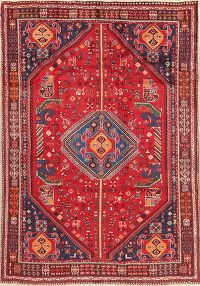 Tribal Abadeh Red Persian Wool Rug 6x8