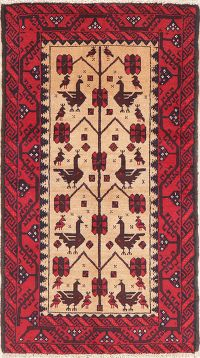 Brown Tribal Balouch Persian Wool Rug 3x5