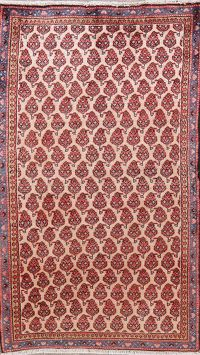 All-Over Mahal Persian Wool Runner Rugs 3x6