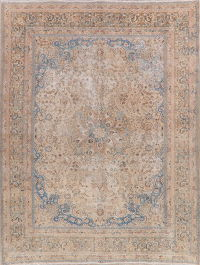 Worn Muted Distressed Mashad Persian Area Rug 10x12