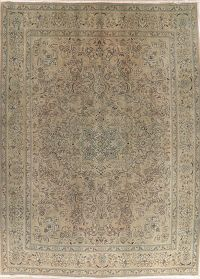 Vintage Tabriz Muted Distressed Persian Area Rug 10x13