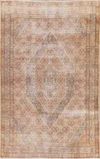 Antique Muted Distressed Mood Persian Area Rug 7x11