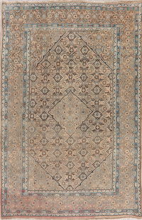 Vintage Mahal Muted Distressed Persian Wool Rug 6x10