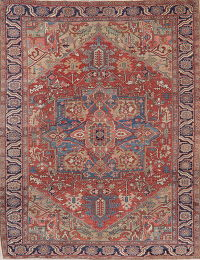 Pre-1900 Vegetable Dye Heriz Persian Wool Area Rug 9x12