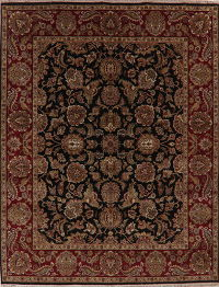 Floral Black Agra Indian Oriental Wool Area Rug 8x10