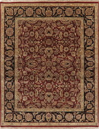 Floral Red Agra Indian Oriental Wool Rug 8x10
