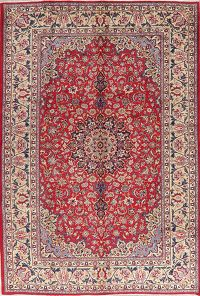 Vintage Floral Red Najafabad Persian Wool Area Rug 7x11