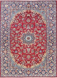 Traditional Floral Red Najafabad Persian Area Rug 9x12