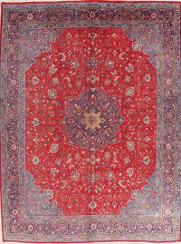 Vintage Floral Red Sarouk Persian Wool Area Rug 10x13