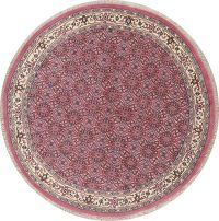 Pink Bidjar Indian Oriental Wool Rugs