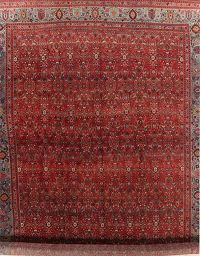 Vegetable Dye Antique Floral Bidjar Persian Wool Rug 15x25