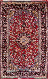 Traditional Floral Red Najafabad Persian Wool Rug 9x16