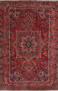 Antique Floral Red Bakhtiari Persian Wool Rug 10x15