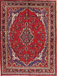 Floral Red Hamedan Persian Wool Area Rug 8x10