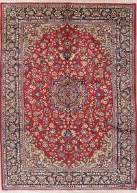 Traditional Floral Red Najafabad Persian Area Rug 8x11