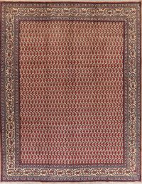 All-Over Tabriz Persian Wool Area Rug 10x12