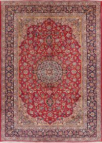 Vintage Floral Red Najafabad Persian Area Rug Wool 10x14