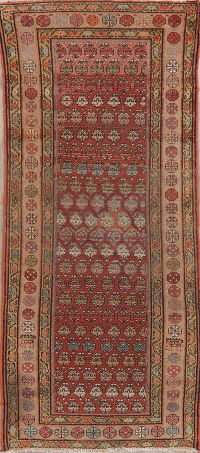 Pre-1900 Antique Vegetable Dye Malayer Persian Rug 3x8
