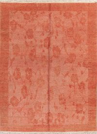 Rust Red Modern Pakistan Oriental Area Rug Wool 8x10