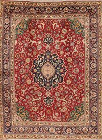 Vintage Floral Red Tabriz Persian Area Rug Wool 9x12