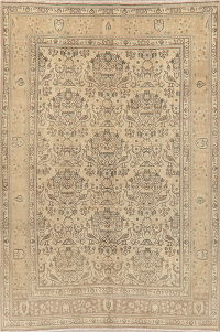 Vintage Muted Tabriz Persian Area Rug 6x9