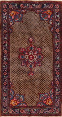 Brown Geometric Koliaie Persian Area Rug 5x9