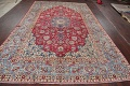 Floral Red Najafabad Persian Area Rug 8x13 image 20