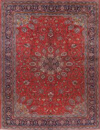 Vintage Floral Red Sarouk Persian Area Rug 10x13