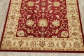 Floral Agra Oriental Area Rugs image 8