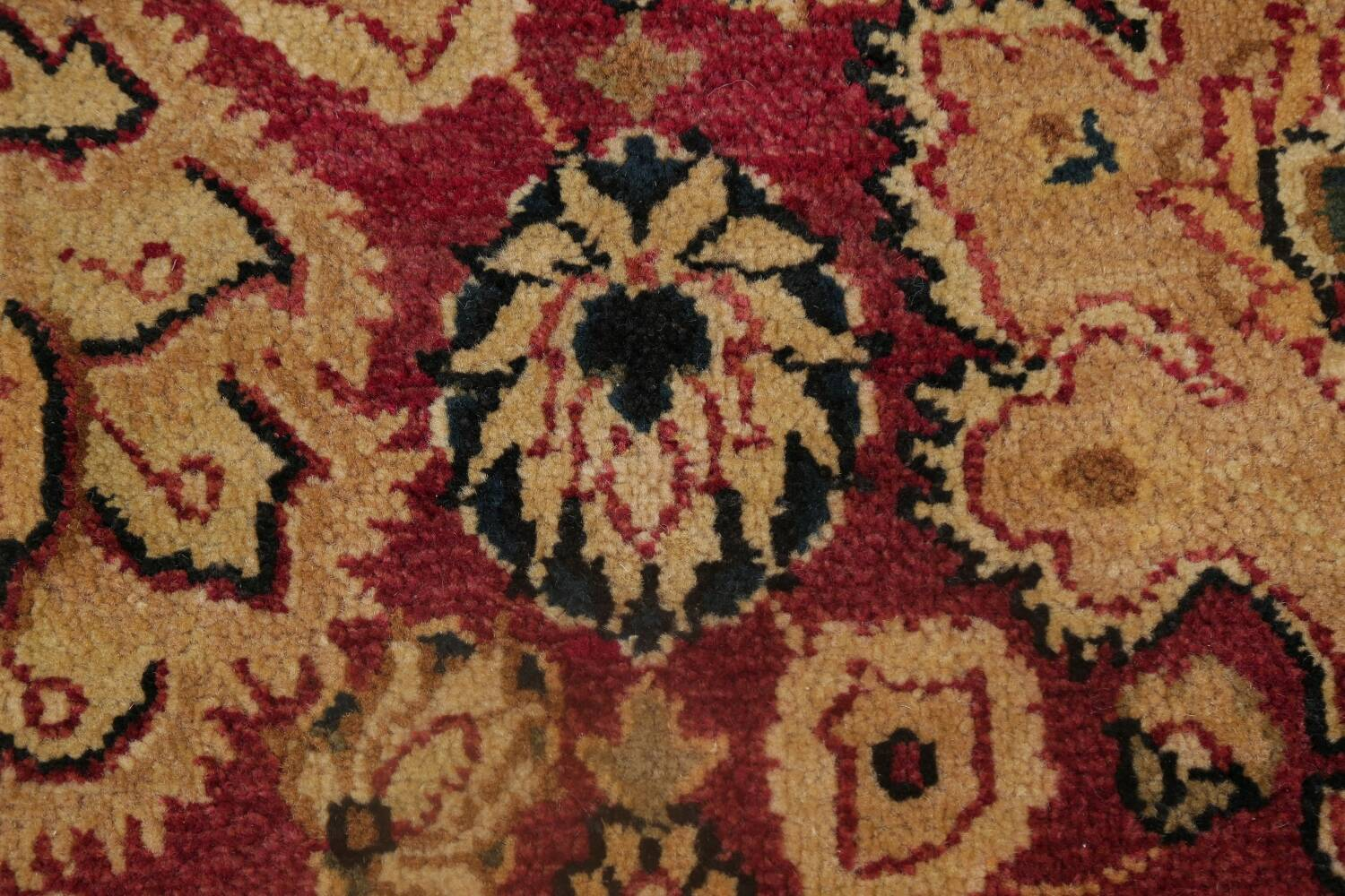 All-Over Floral Agra Oriental Area Rug 8x10 image 9