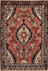 Floral Red Hamedan Persian Area Rug 1x2