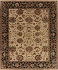 Floral Agra Oriental Area Rug 8x10