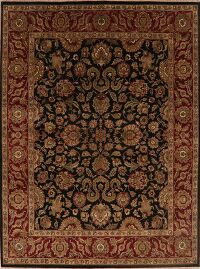 Floral Agra Oriental Area Rug 8x11