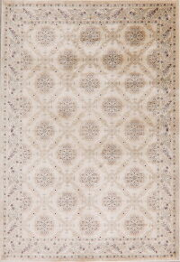 Transitional Ivory Modern Area Rug 5x7