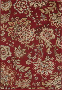 Transitional Floral Red Area Rug 5x7