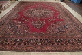 Antique Floral Red Dorokhsh Persian Rug Large 11x14 image 19