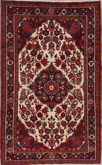 Ivory Floral Lilian Persian Area Rug 5x8