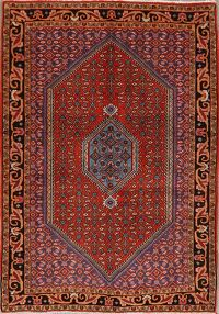 Vintage Geometric Red Bidjar Persian Area Rug 4x5