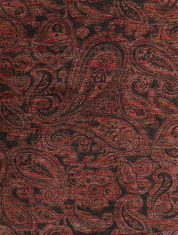 All-Over Paisley Modern Oriental Area Rug 8x10