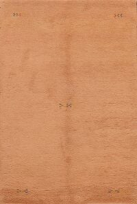 Contemporary Peach Gabbeh Oriental Area Rug 4x6
