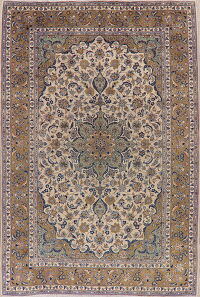 Floral Ivory Najafabad Persian Area Rug 8x12