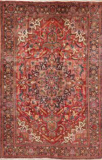 Floral Red Heriz Persian Area Rug 6x10