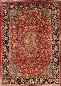 Floral Red Sarouk Persian Area Rug 9x12
