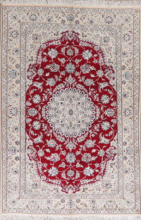 Floral Red Nain Persian Area Rug 6x10