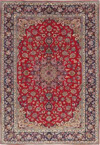 Floral Red Najafabad Persian Area Rug 8x12