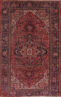 Floral Heriz Red Persian Area Rug 8x12