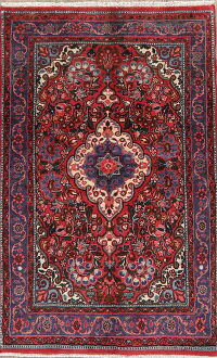 Floral Malayer Persian Area Rug 3x5